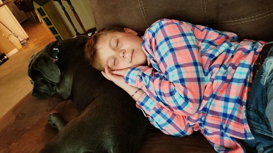 Boy sleeping on dog at home
