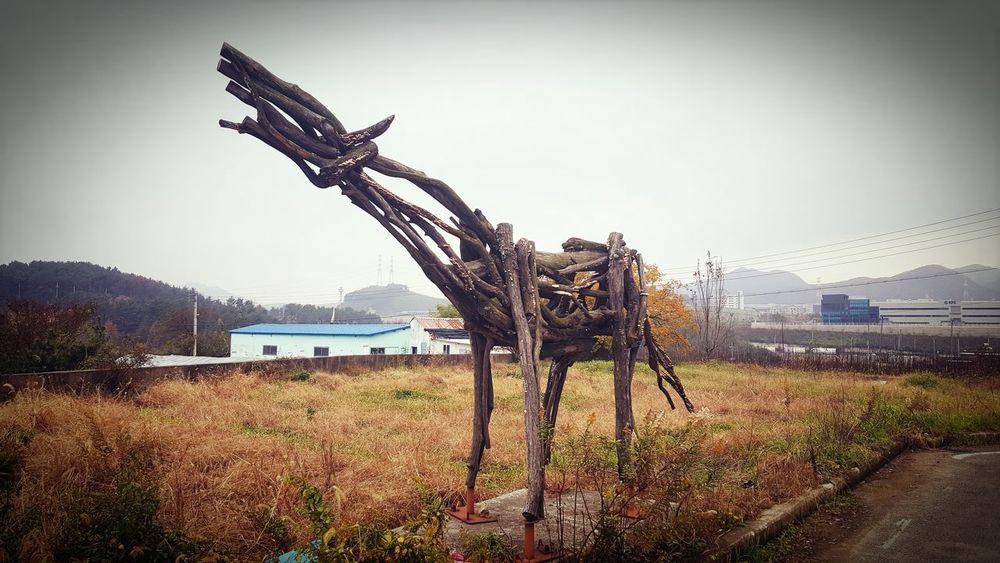 Art Work Horse Wood - Material Field