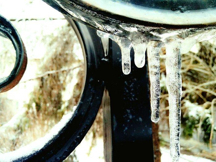 Слезы зимы Water апрель  Day April Winter EyeEm Diversity The Secret Spaces Art Is Everywhere EyeEmNewHere Break The Mold TCPM