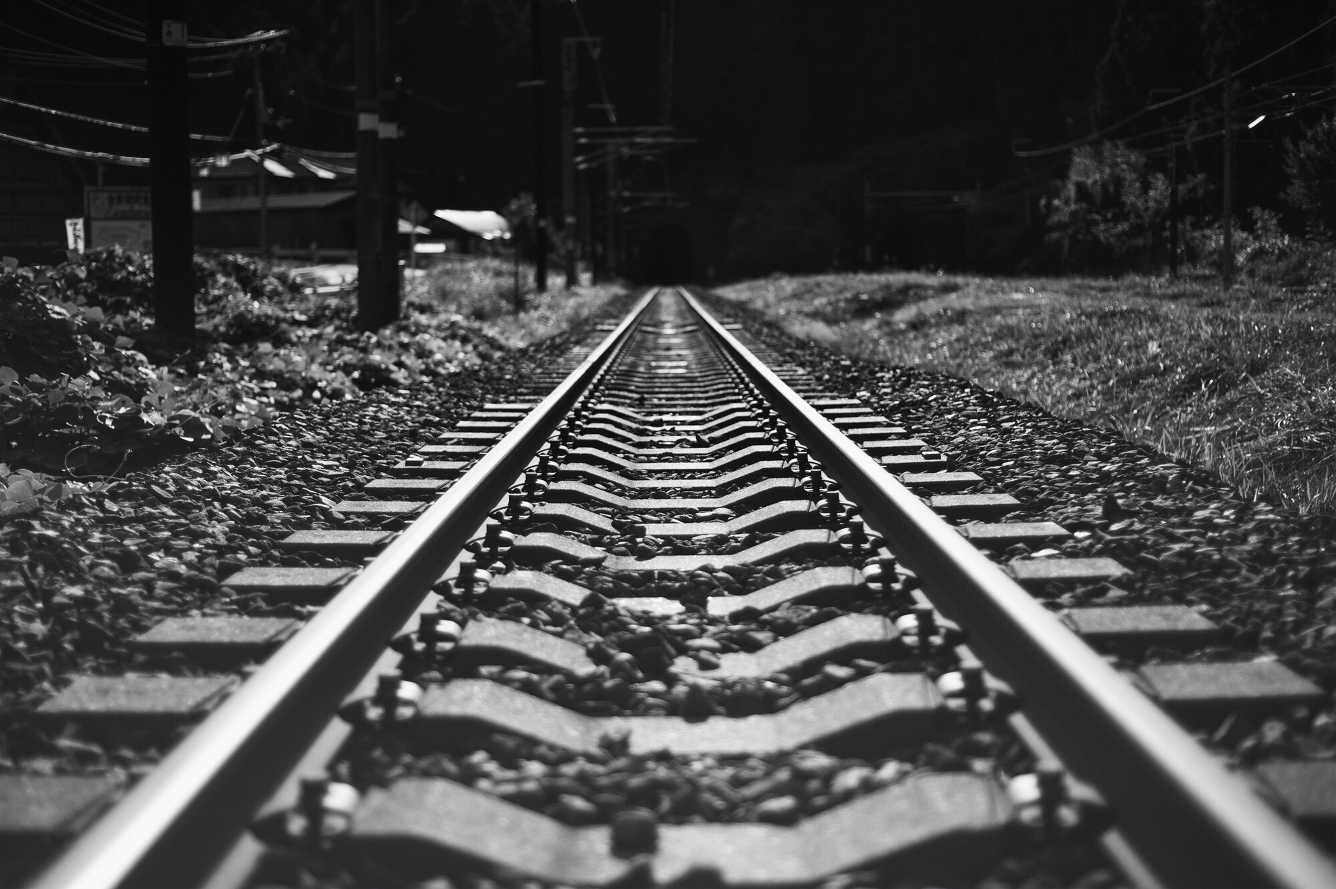 railroad track, transportation, rail transportation, the way forward, diminishing perspective, vanishing point, mode of transport, public transportation, tree, railway track, high angle view, travel, outdoors, straight, day, no people, in a row, surface level, long, metal