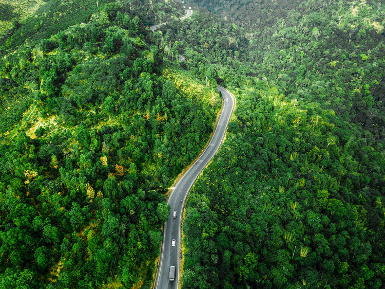 DJI X Eyeem Drone  Aerial View Beauty In Nature Curve Day Dronephotography Forest Freshness Green Color Growth High Angle View Landscape Mountain Nature No People Outdoors Plant Road Scenics Skypixel Transportation Tree