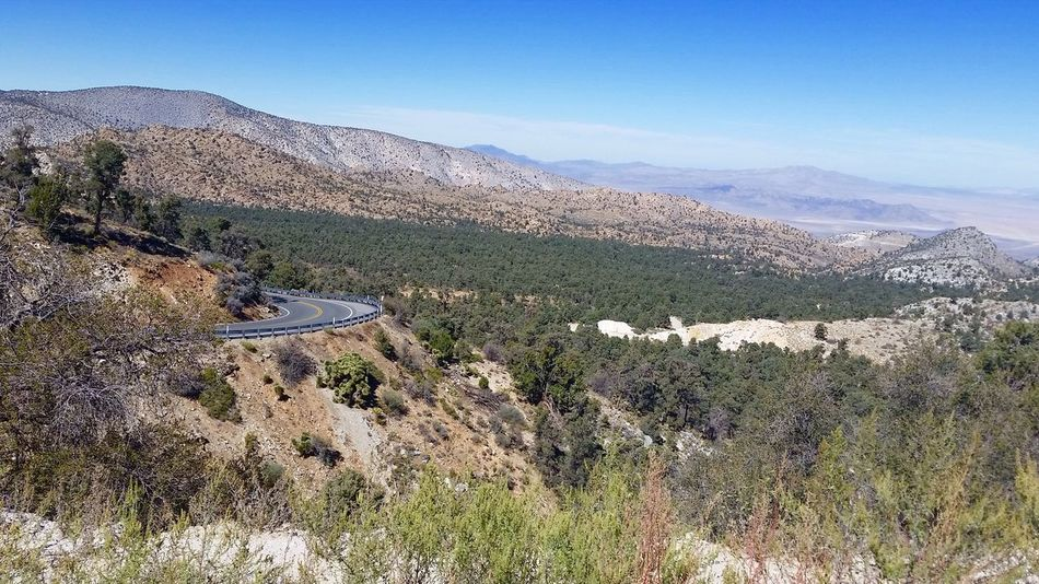 Mountain Nature Scenics Day Tranquility Landscape Tranquil Scene Beauty In Nature Outdoors Non-urban Scene No People Mountain Range Clear Sky Tree Sky 100 Days Of Summer Sommergefühle Highway 18 Lucerne Valley California Breathing Space Perspectives On Nature