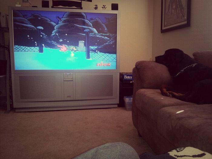 Watching Spongebob with Koaa(: