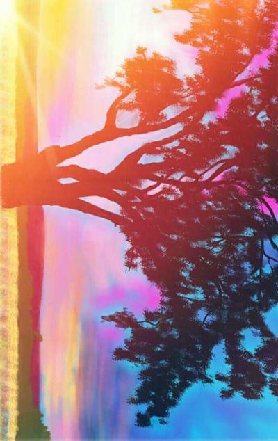 Myartwork Myowncreation  Digital Painting Mobilepainting Photo Editor Pro Treescape Tree Art Beyondwords