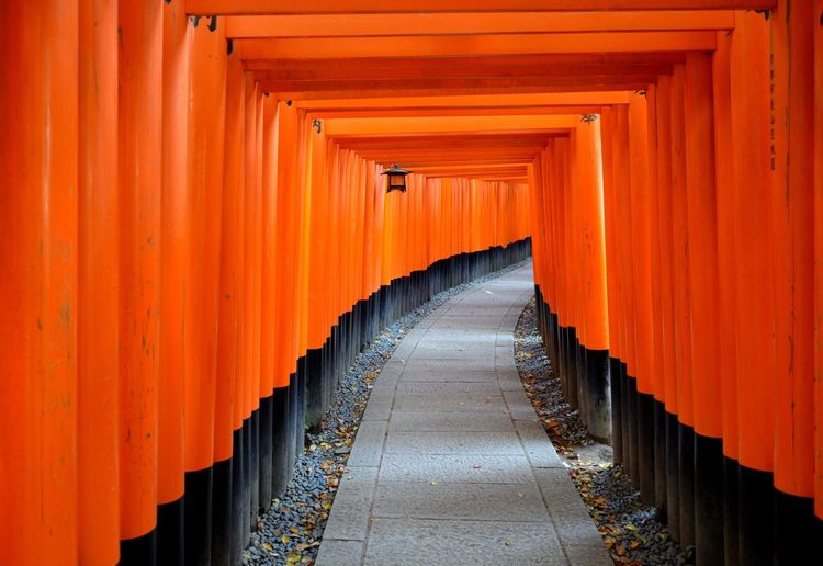 Found On The Roll en el santuario Fushimi Inari-taisha. Sanctuary  Japan Japan Culture Kyoto EyeEm Best Shots Market Reviewers' Top Picks The Architect - 2016 EyeEm Awards The Following