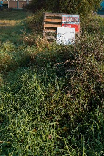 Gras Box Box -