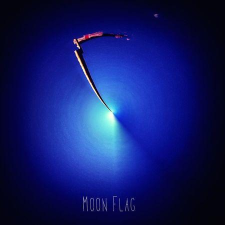 Moon Flag Tinyplanet