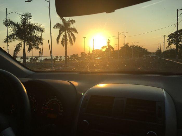 Sunlight Car