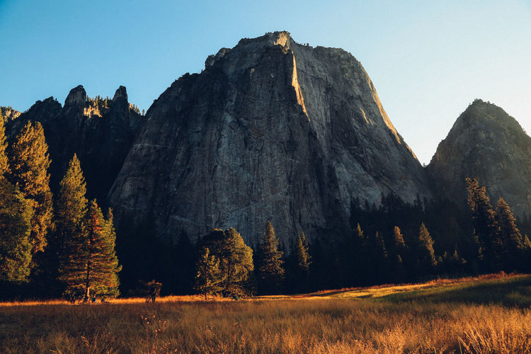Beautiful Nature California Camping Cliff EyeEm Nature Lover Fall Fall Beauty Geology Golden Hour Majestic Mountain Mountains Nature Nature Nature Photography Nature_collection Naturelovers Non-urban Scene Physical Geography Rock Formation Tranquil Scene Trees Yosemite Yosemite National Park