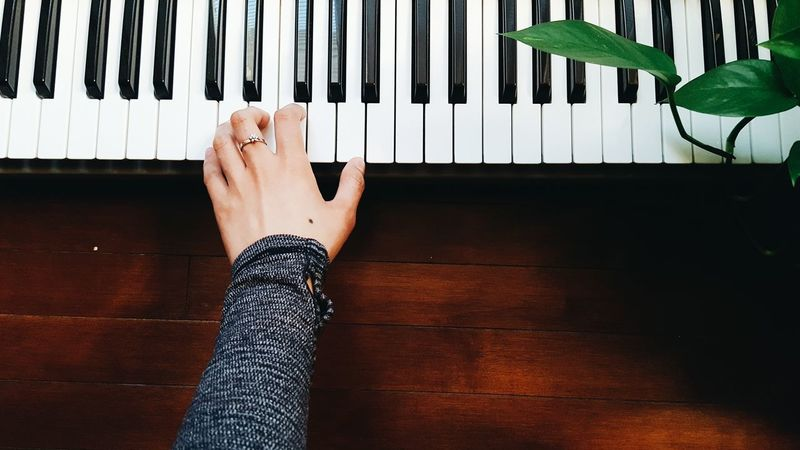 Human Hand Home Keys Piano Moments Bright Lovely People Human Body Part Black And White Indoor Plants Plant Keyboard Ring Love Hand EyeEmNewHere Musical Instrument Indoors  Music Piano One Person Leaves Plants Adult Leisure Activity