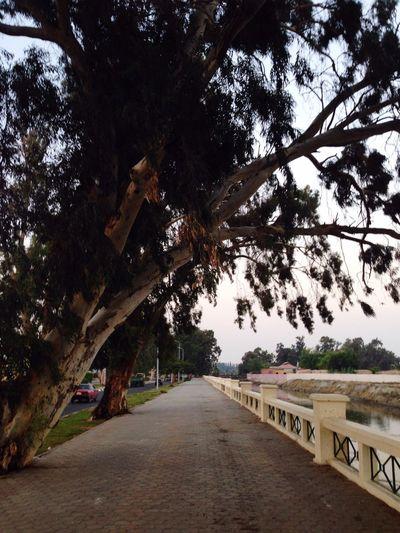 My favorite place in the world❤️ Nemra6 Running Longwalks Taking Photos Relaxing First Eyeem Photo