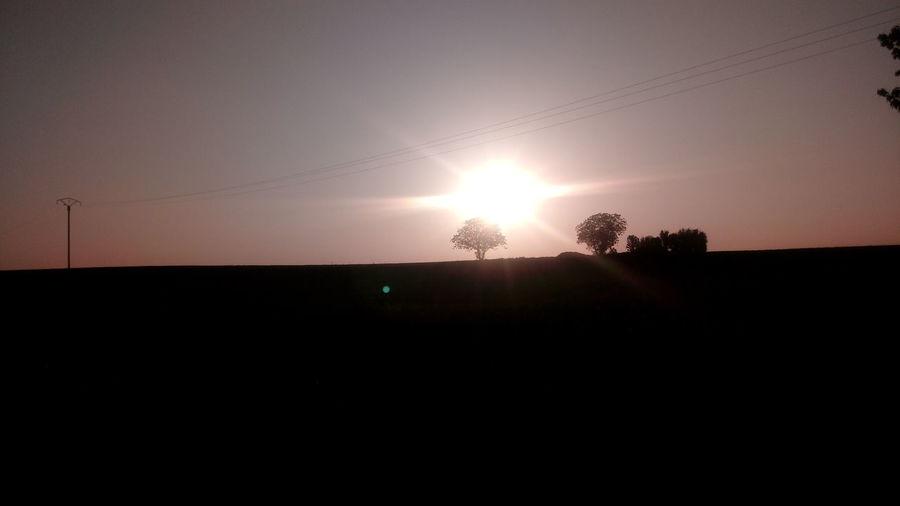 Astronomy Tree Sunset Silhouette Sun Sky Landscape