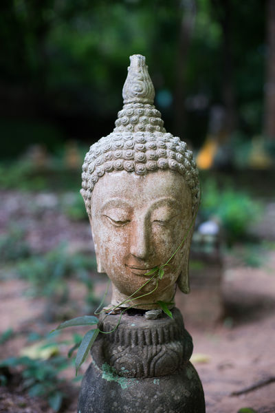 Bhuddha HEAD Thailand Art And Craft Belief Bhudda Bhuddhism Carving Close-up Craft Creativity Day Focus On Foreground Human Representation Idol Male Likeness Nature No People Outdoors Park Religion Representation Sculpture Spirituality Statue