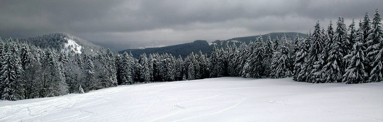 Winter Snow Cold Temperature Tranquil Scene Season  Mountain Range Beauty In Nature Forest Thüringer Wald Schmücke Grey Sky The Winter Is Coming