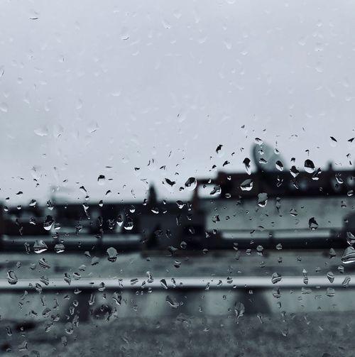 Gloomy Wet Drop