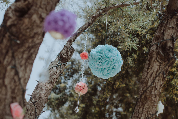 Close-up of heart shape hanging on tree trunk