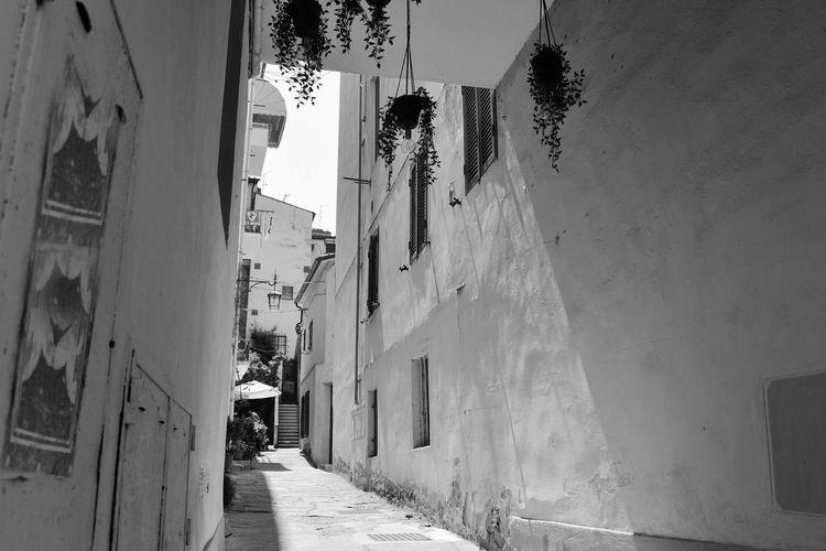 Arezzo Europa