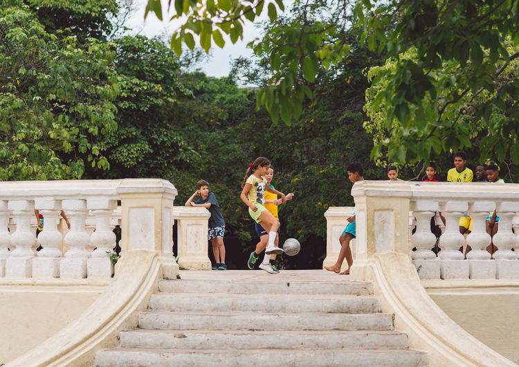 People on staircase by trees