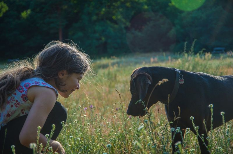 Girl And Dog On Grassy Field
