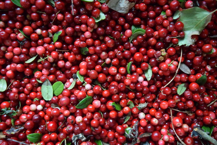 Full frame shot of cherries