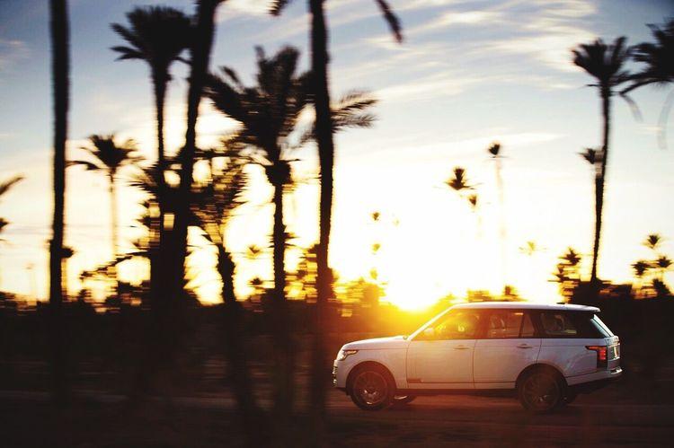 Sport Car Range Rover Love Sun Summer