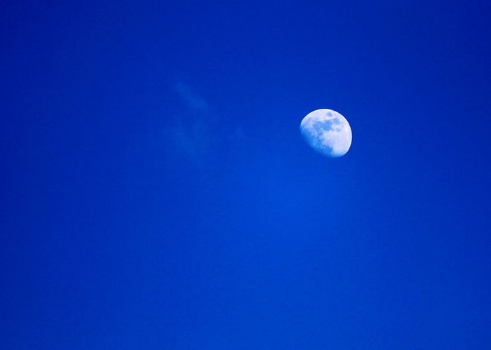 Clear blue sky and today's moon 👏Taking Photos Afternoon Moon Hello World Relaxing Blue Blue Wave Showcase April Lovely Sunday In LONDON❤ Regents Park Nature Nature Photography Blue Sky Moon_collection Moon Moon_of_the_day My Favorite Photo Nature And Life Nature Diversities Colour Of Life Colour Pallete