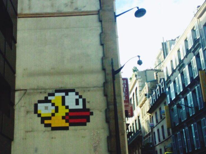 Street Graffiti Stunned Duck = my Expression