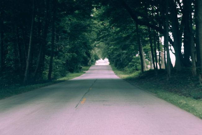 Trying out Ta-ku's new photo filter from VSCO. Loving it! Ta-ku Ta-ku × VSCO Distant View Indiana VSCO Vscocam GREEN LIFE Dark Lonely Road Long Road