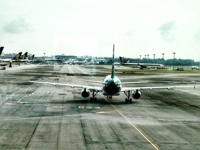 Silkair Airbus A320 Airplane Airport Aircraft Aeroplane Singapore Changi Airport Changiairport