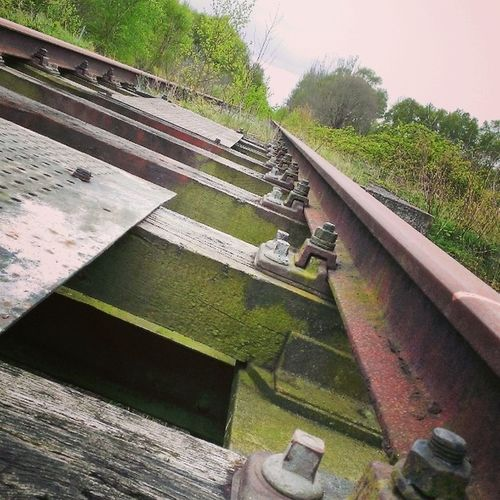 Small Bridge Old Pete  Rail Railroad Train Track From  Home Town Nieuw_Amsterdam Drenthe To  Germany Woods Iron Metal Architecture Nature Enjoy 420 Bjorngruppen Dutch