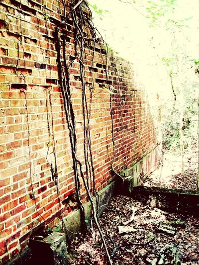 Old WWII munitions factory Estell Manor Park New Jersey Lostplaces WWII Pinelands Southjersey