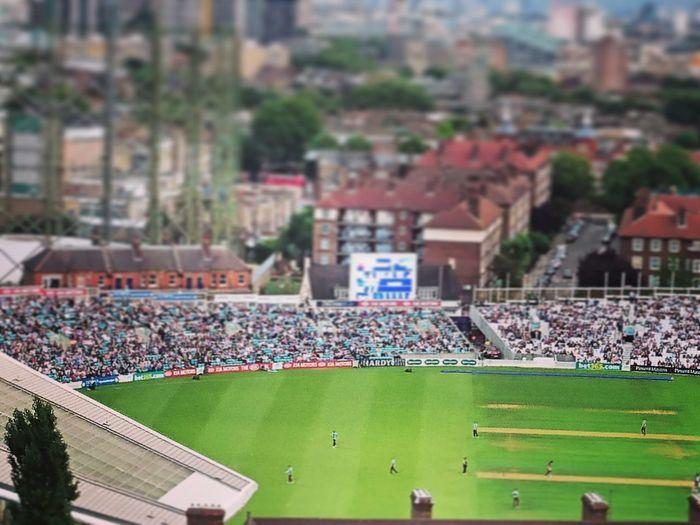 Cricket! Cricket Ground Oval Toy City London Panoramic Photography Fine Art Photography Macro Photography Macro City