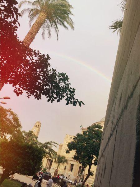 Rainbow🌈 Cairo University First Eyeem Photo