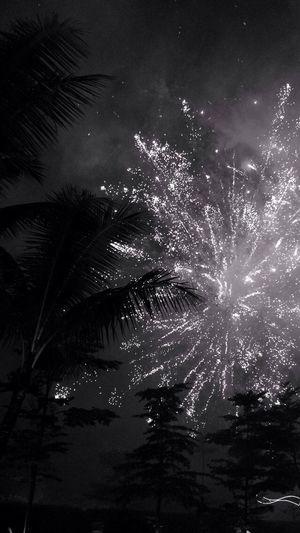 Happy New Year 2015 2015