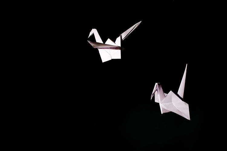 Bird Flying Flying In The Sky Free Freedom Light Lightweight Origami Paper Paper Cranes Paperbirds