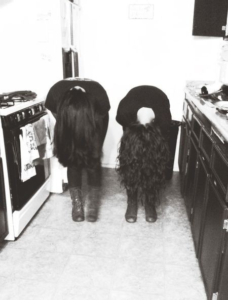 Longhair Blackandwhite Iloveher Bestfriend