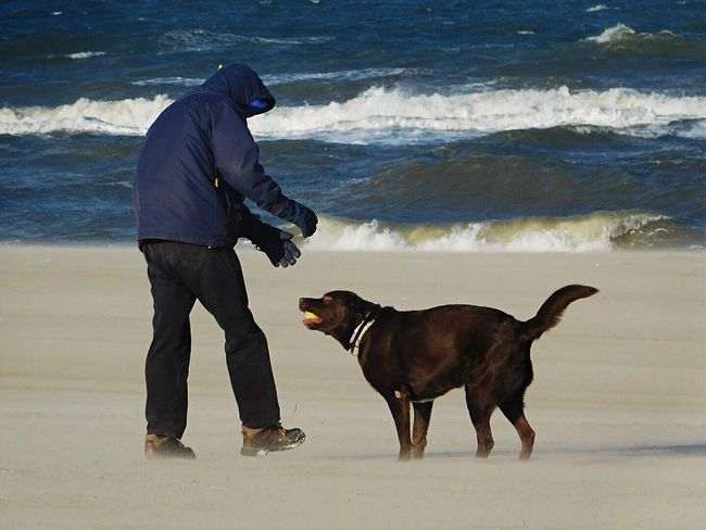 Check This Out Hanging Out Hello World Hi! Relaxing Taking Photos Enjoying Life Randompeople Dog Person Nikonphotography Beautiful Day Beach Life Amazing Beachphotography Winter Beautiful Cold Days Windy Windy Day