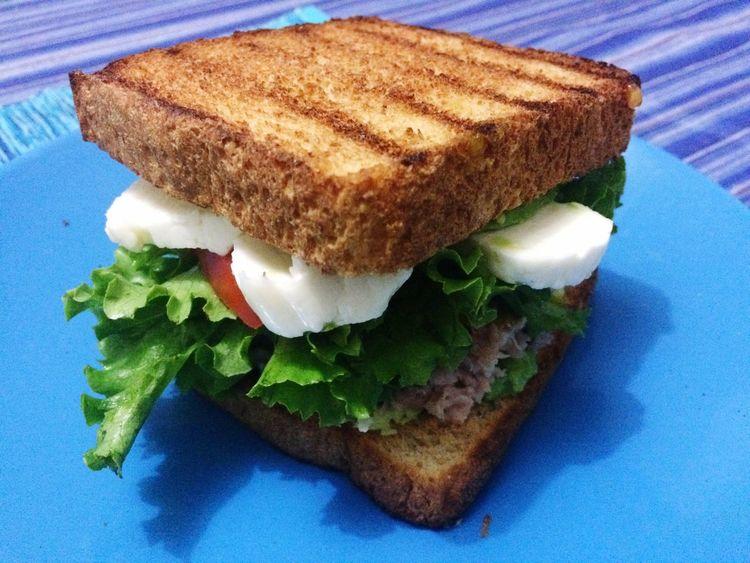 Sandwiches Sandwich Tuna Sandwich  Sandwichphoto Food Healthy Dinner