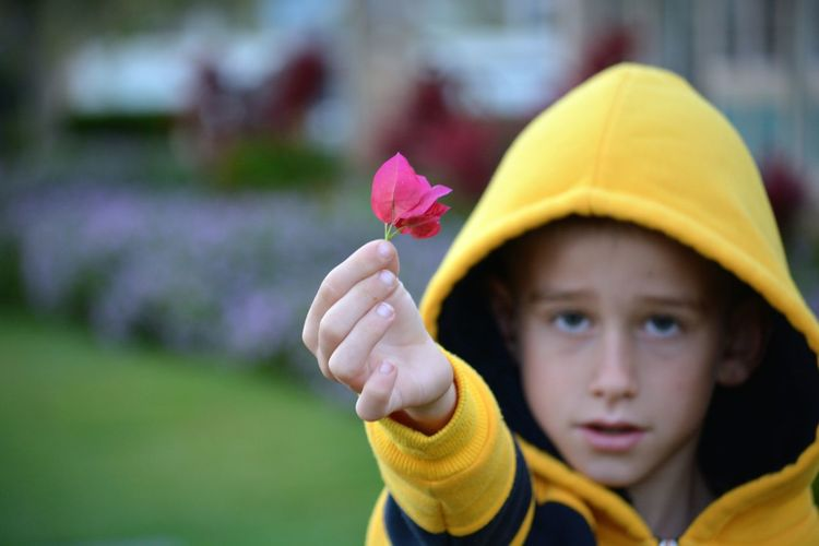 Portrait of boy holding pink flower