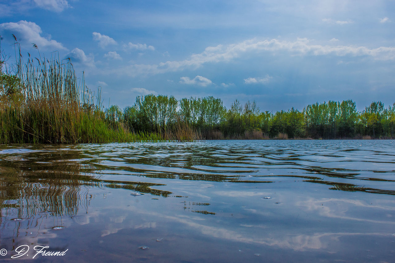 tranquility, water, nature, tranquil scene, cloud - sky, beauty in nature, sky, scenics, outdoors, no people, day, reflection, lake, tree, waterfront, growth