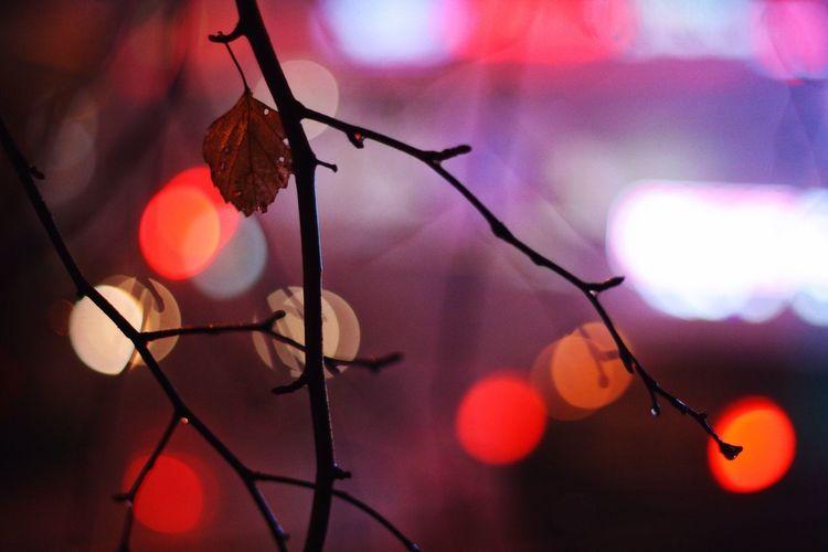 27.03 Россия Russia Ekaterinburgcity Ekaterinburg Ekaterinburg_foto Екатеринбург Evening вечер туман Fog юго-запад Юго-Западный район городскаясреда