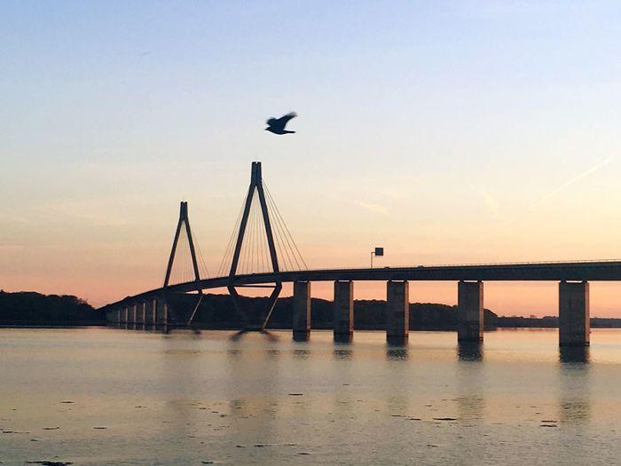Farø bridge Denmark Fårø Fårø Denmark Bridge Bridges Denmark E47 Denmark Germany Møn