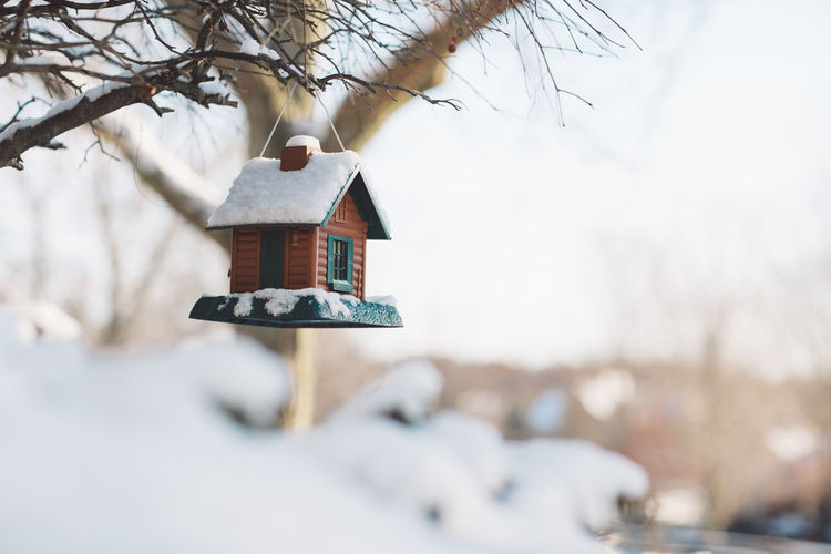 Birdhouse on tree by house during winter