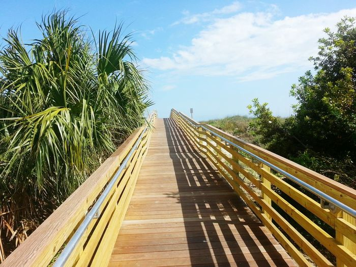 Boardwalk amidst trees against sky on sunny day