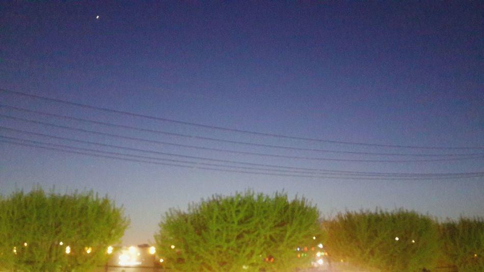 어디에 있든 이 저녁빛은 나에게 기쁨을 주기에 난 행복할 수 있다 ! Enjoying Life Night Sky Tree And Sky