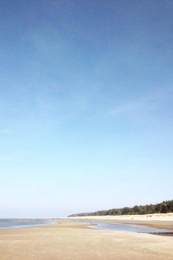 Beach Sunny