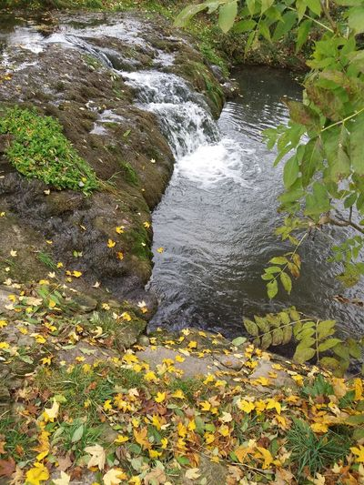 Mühlbach Mühlbach Autumn Beauty In Nature Day Forest Leaf Motion Nature No People Outdoors Plant Scenics Tranquility Tree Water Waterfall