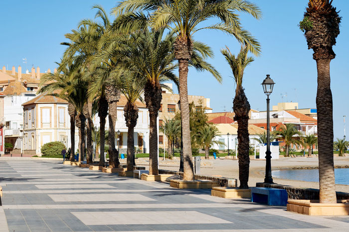 Promenade of Los Alcazares. Fishing village on the western side of the Mar Menor in the autonomous community and province of Murcia, southeastern Spain. Clear Sky Coastline Fishing Village Murcia Promenade SPAIN Architecture Beach Blue Sky Coast Coastal Feature Empty Landscape Los Alcázares No People Nobody Outdoors Palm Lined Palm Tree Palm Trees Street Sunny Day Town Tree Village