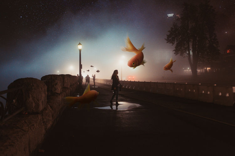 Double Exposure Of Goldfish In Tank With People Walking On Bridge At Night