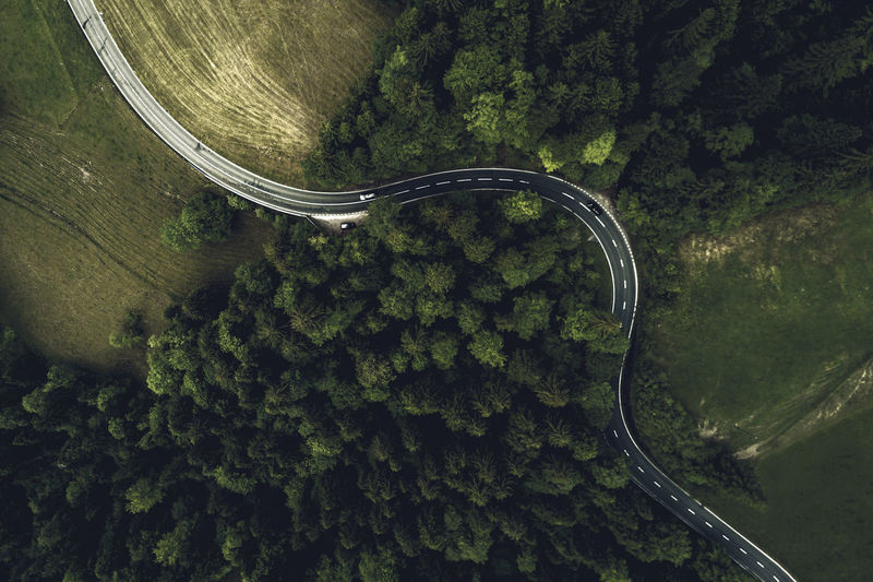 Aerial View Curve Forest High Angle View Mountain Road Nature Road Transportation Tree Winding Road The Great Outdoors - 2017 EyeEm Awards